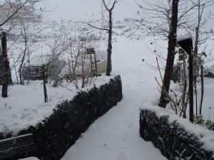 Finalmente neve in buona quantità